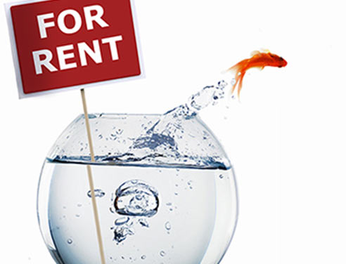 how to find good tenant fast